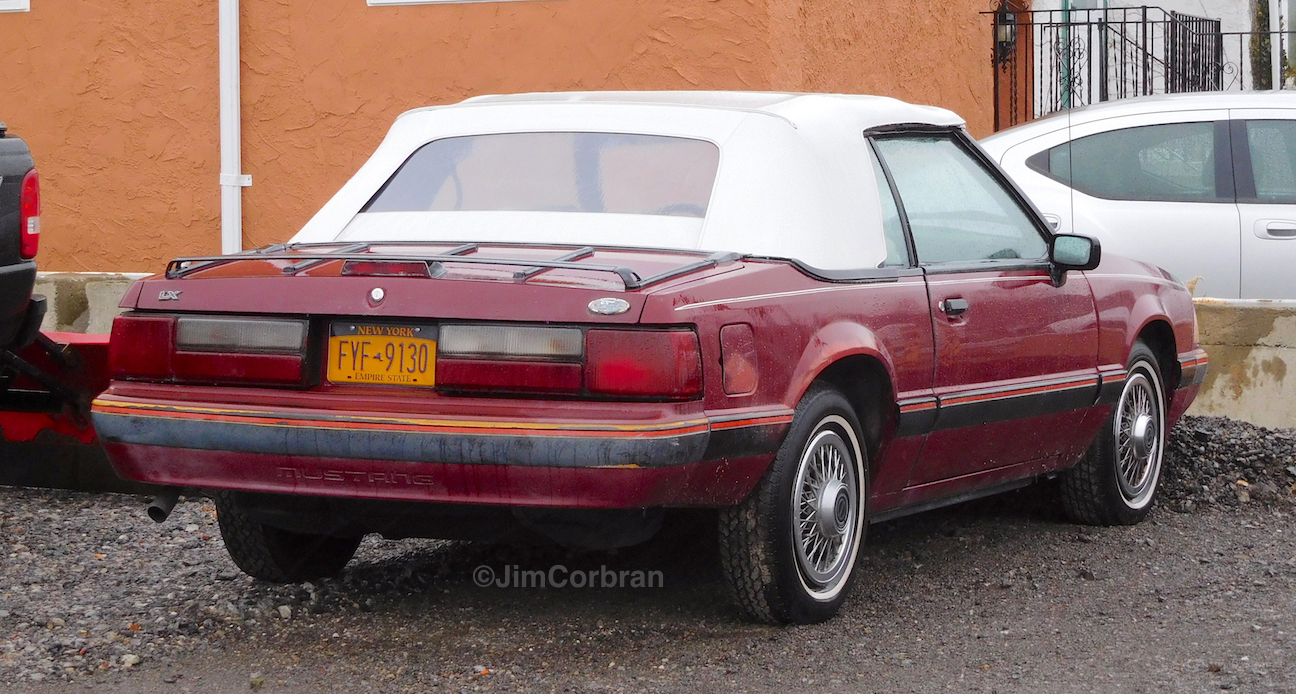 RealRides of WNY - 1988 Ford Mustang