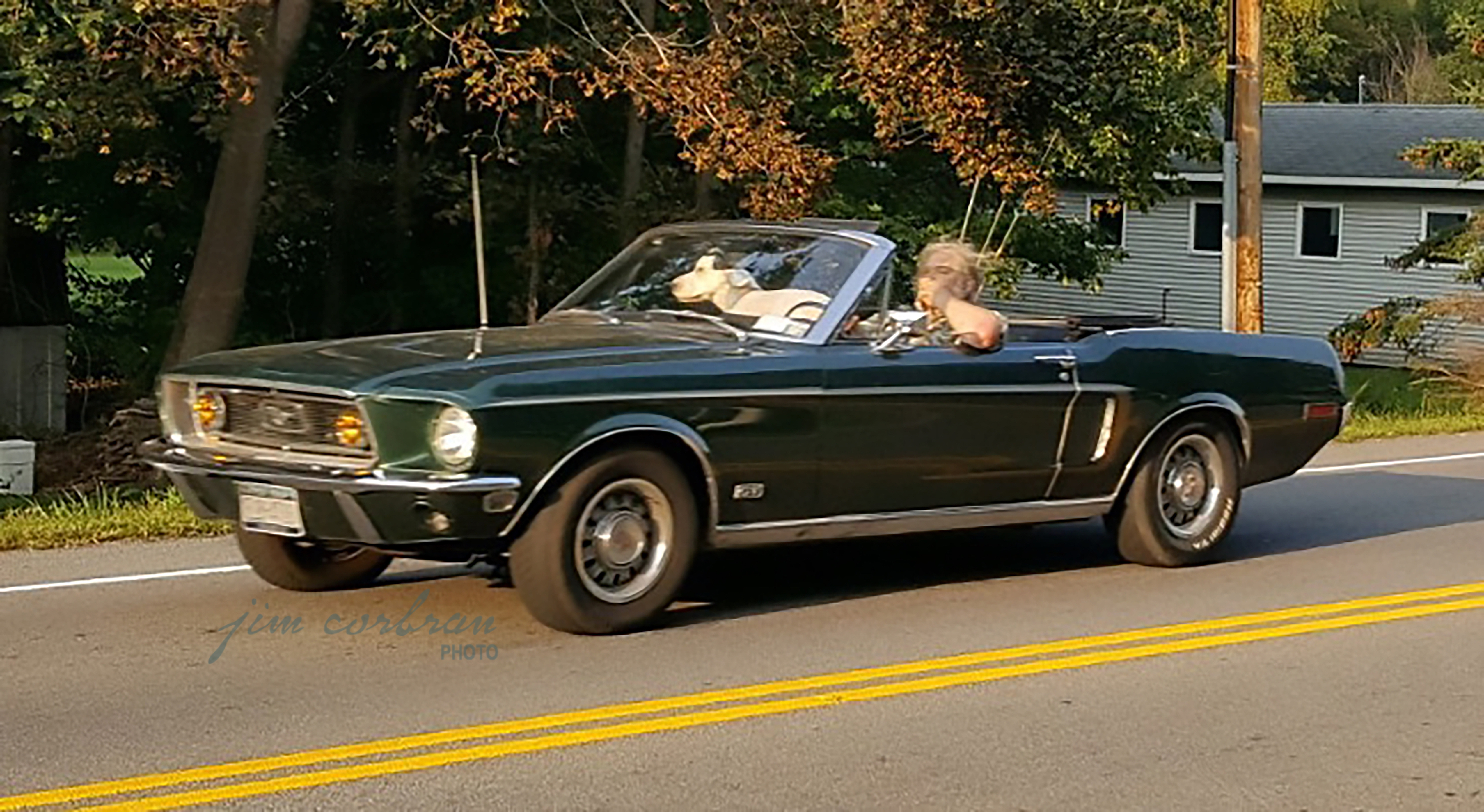 RealRides of WNY - 1968 Ford Mustang