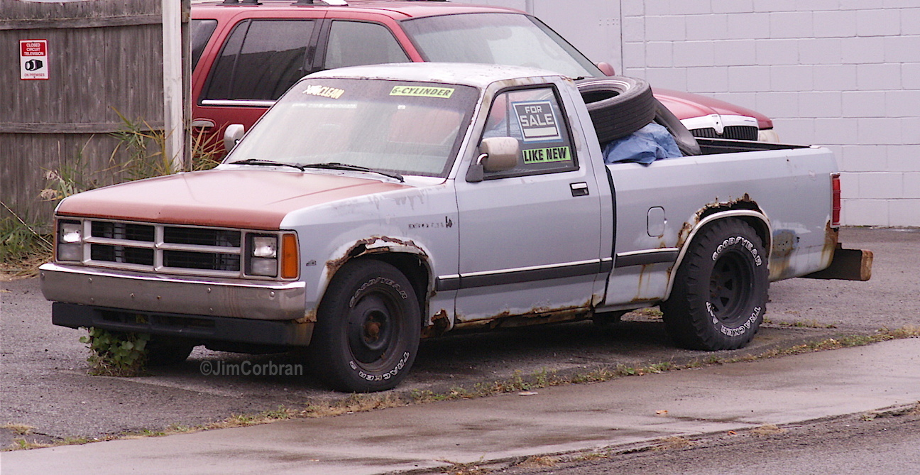 RealRides of WNY - Dodge Dakota, c1990