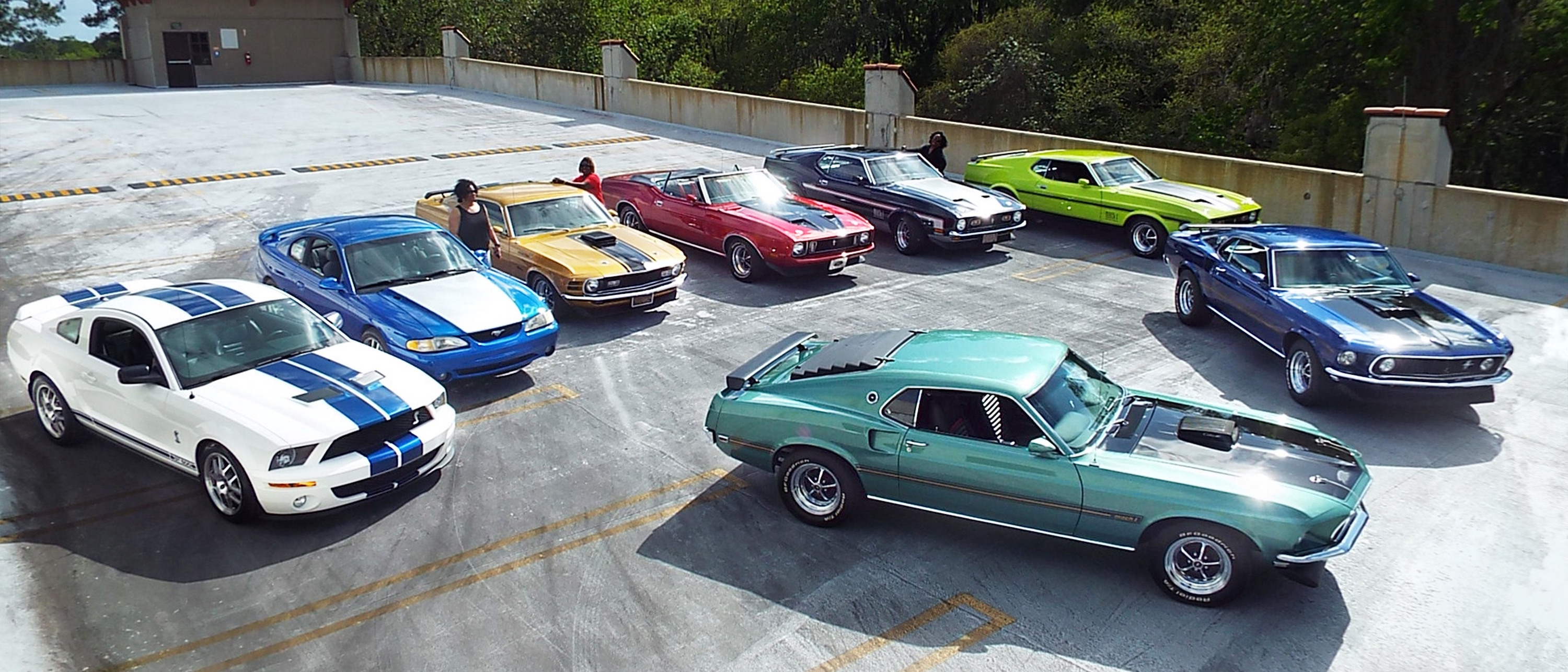 SPEEDy MUSTANG COLLECTION